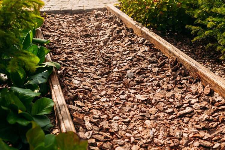 Gartenweg Gunstig Anlegen Mit Preiswerten Materialien In 2020 Landschaftsbau Gartenweg Garten