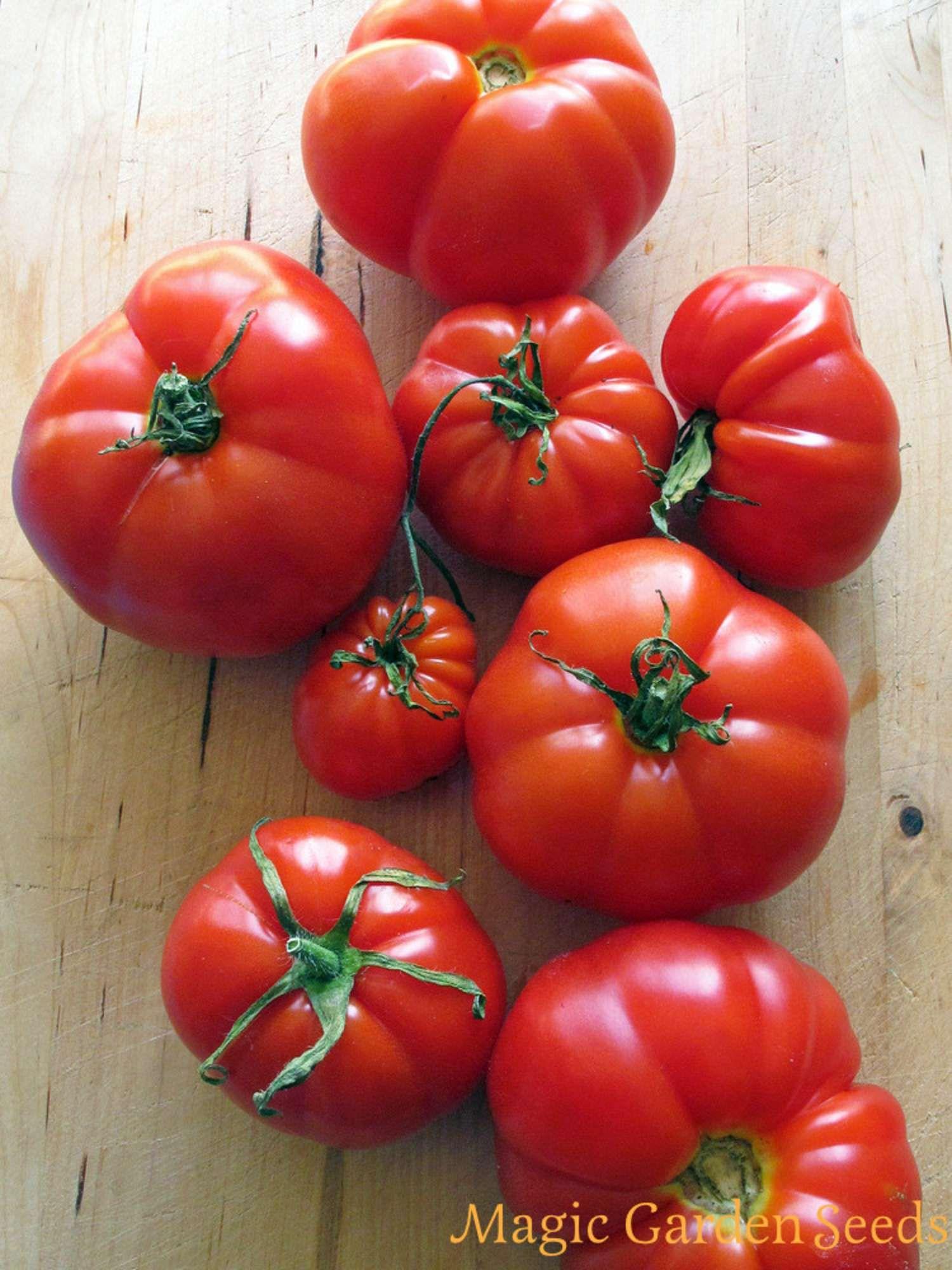 Pin Auf Tomaten Samen