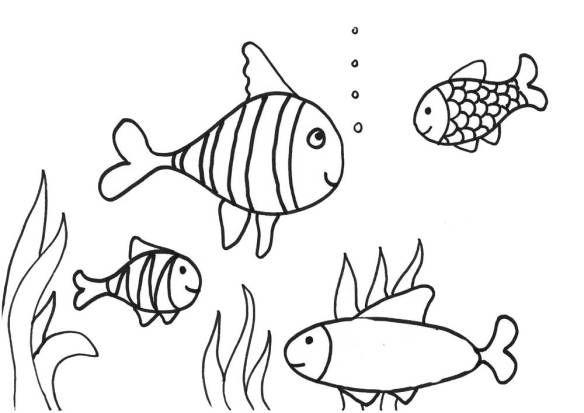 Contoh Gambar Mewarnai Ikan Gambar Diwarnai Pinterest Coloring