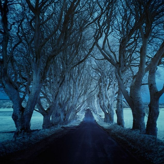 Top Chart Fun - Photographer Captures Dark And Lonely Roads Around The World (12 Photos)