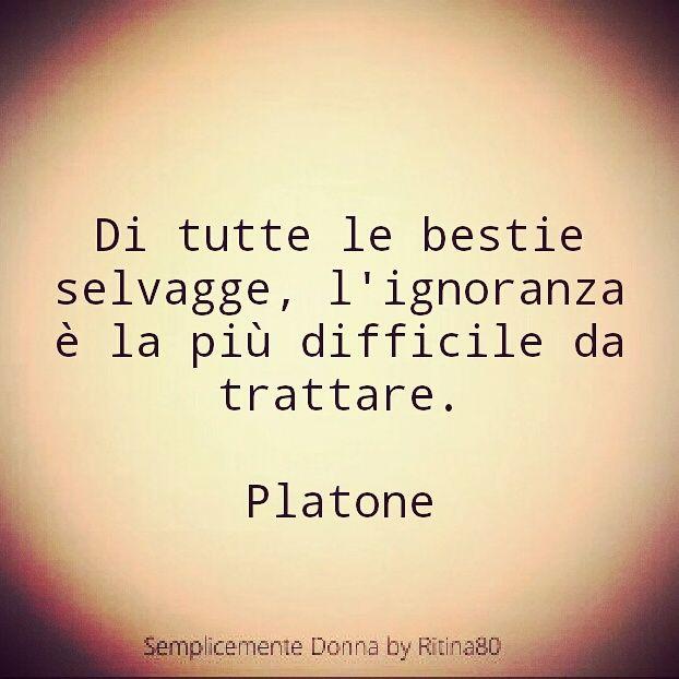 Frasi Famose Di Platone.Di Platone Citazioni Citazioni Motivazionali E Citazioni Buddiste