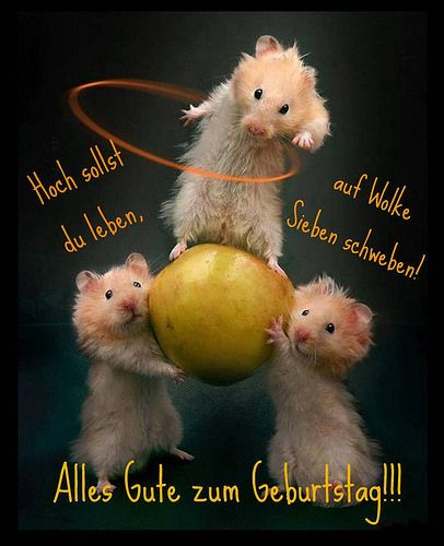 Stromberg Das Grosste A H Bei Tv Total Geburtstag Alles