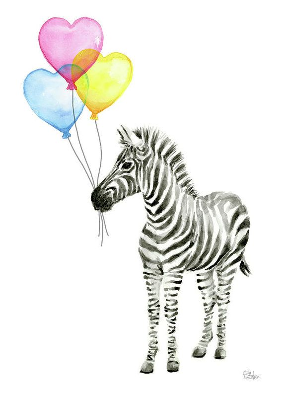 Zebra Art Print Featuring The Painting Zebra Watercolor Baby
