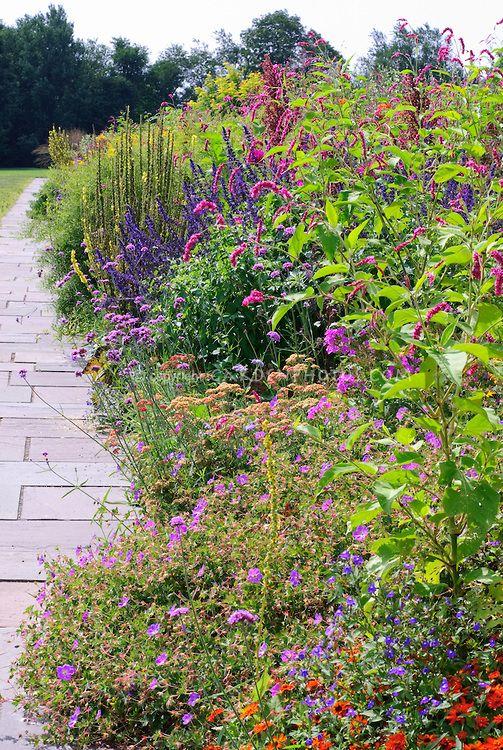 Long Border White Flower Farm Garden Design By Fergus Garrett Of Great Dixter Perennial Bed F Water Wise Landscaping White Flower Farm Waterwise Landscaping