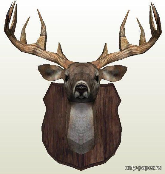голова оленя скачать шаблон трехмерная