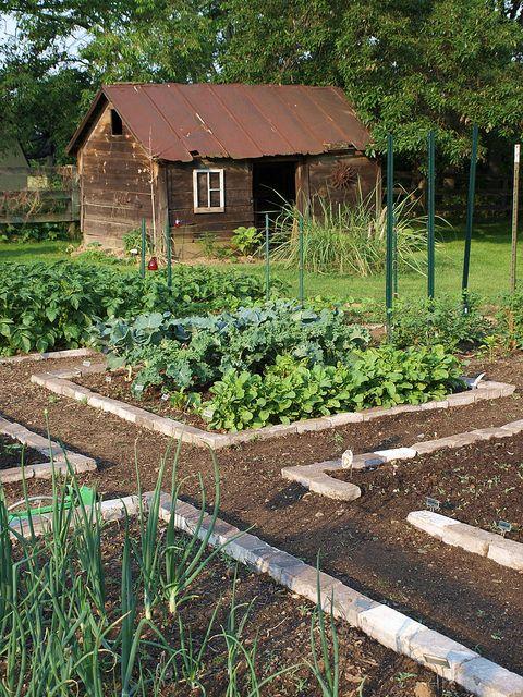 Garden and Shed Pequeños huertos, Huerto y Huerta - diseo de jardines urbanos