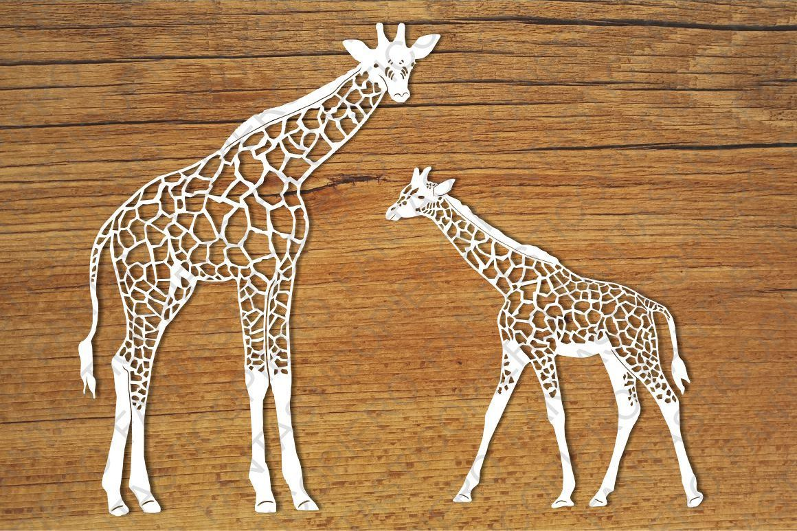 Pin On Giraffe