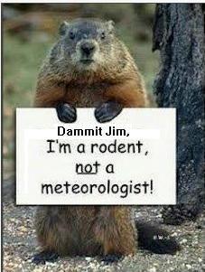 Happy Groundhog Day!! (My Leonard McCoy spin on the ...