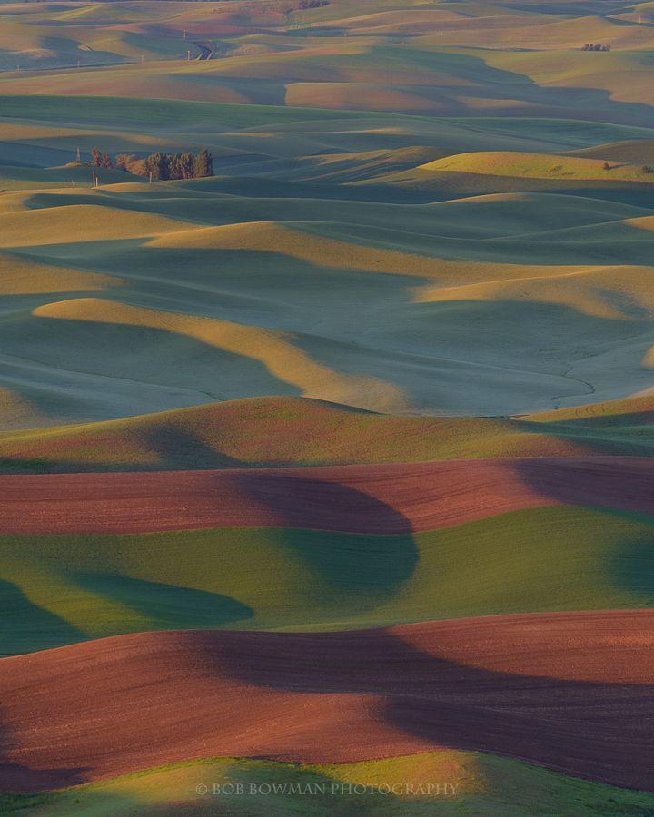 The Palouse by Bob Bowman - Photo 175016077 / 500px