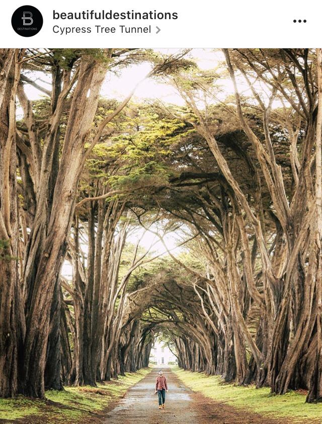 Point Reyes Natl Seashore 16484 Sir Francis Drake Blvd Inverness, CA  94937 Estados Unidos
