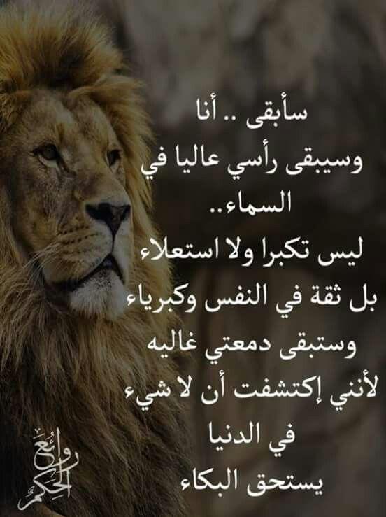 Pin by Radiante87 Radiante on حكمه ❤️ | Arabic tattoo