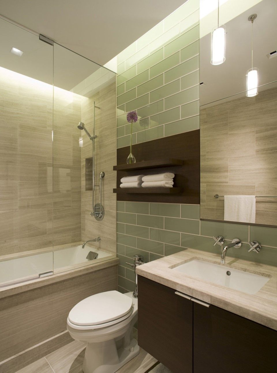 Picture of minimalist wall shelves over toilet seat in spa for Shower over bath ideas