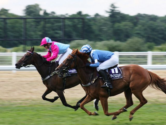 horse racing betting guidelines for child
