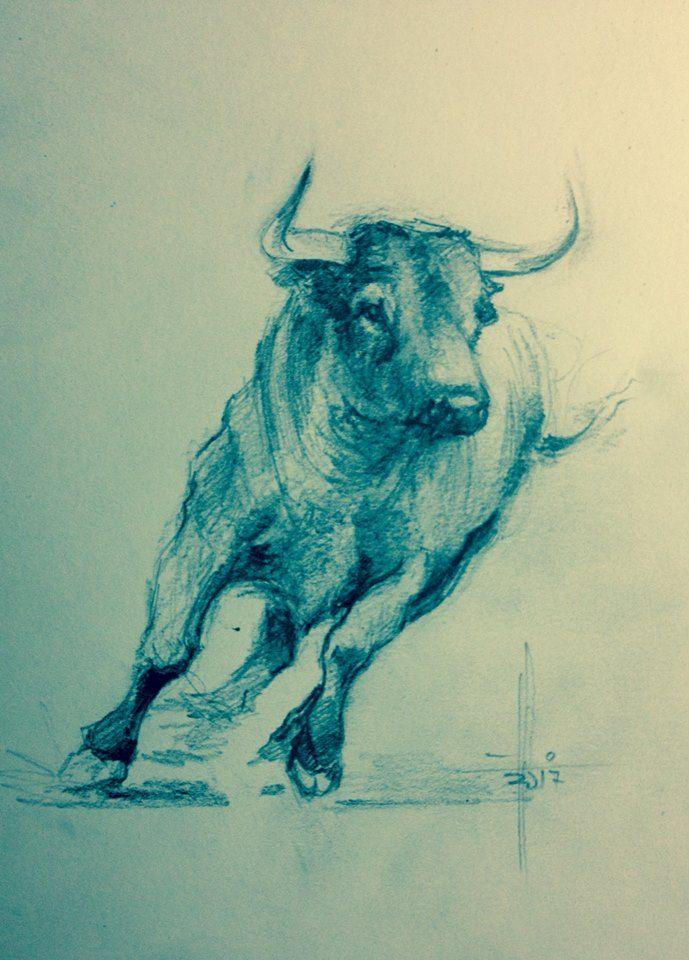 Dibujo A Lápiz De Toro Bravo Por Francisco Javier Abellán Art