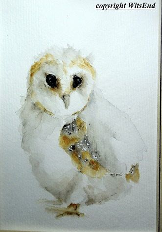 Barn Owl This Piece Is A Fully Hand Painted Original By Seller