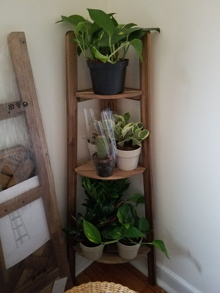 Askholmen Plant Stand Inside Plants Decor Plant Stand Indoor