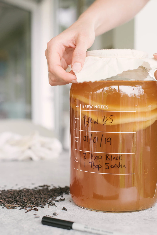 Deluxe Kombucha Brewing Kit in 2020 How to brew kombucha