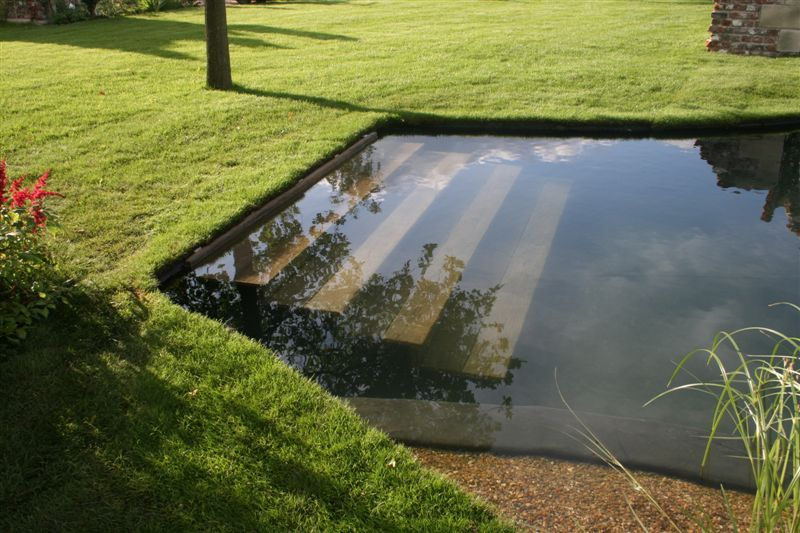 Swimming pools how to build and maintain your outdoor for Natural pond maintenance