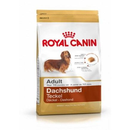 Royal Canin Dachshund Dog Food Online