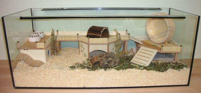 KomplettEinrichtungen 2013  Hamster Wohnwelt  hamster