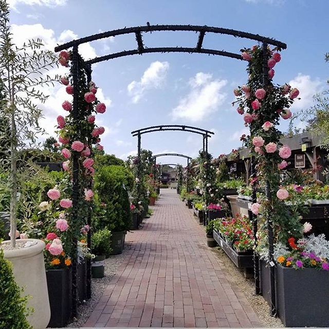 Mondays Aren T All Bad Come Visit Us To Experience This View Today We Re Open Regular Hours Today A Happy And Safe Memori Rogers Gardens Garden Arch Garden