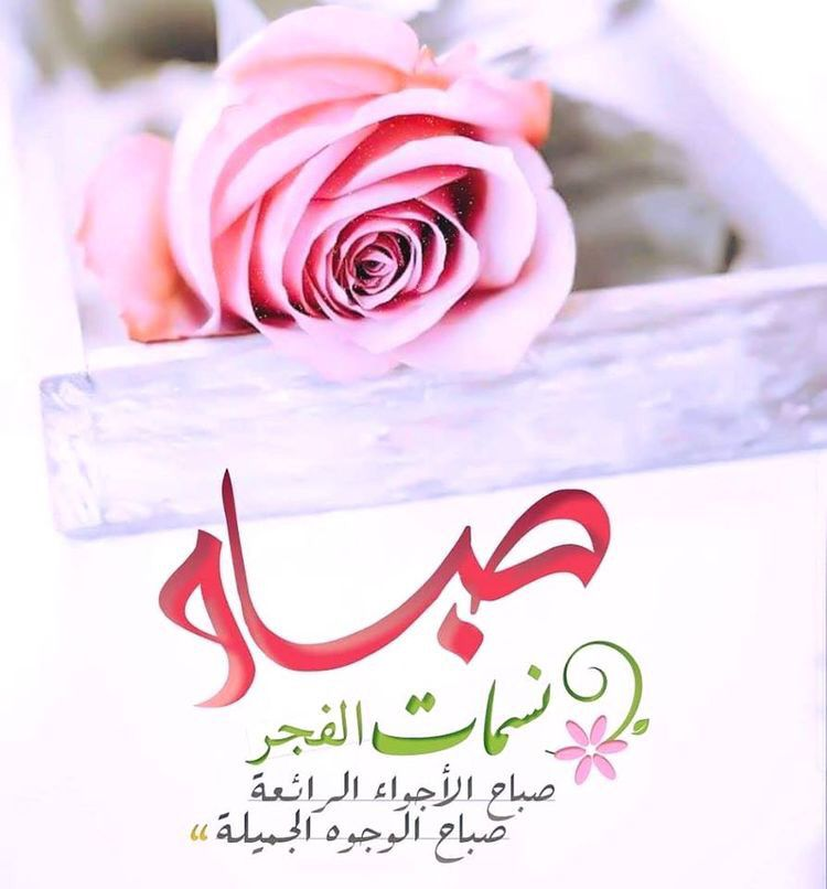 Pin By صورة و كلمة On صباح الخير Good Morning Holy Quran Holi Crown Jewelry
