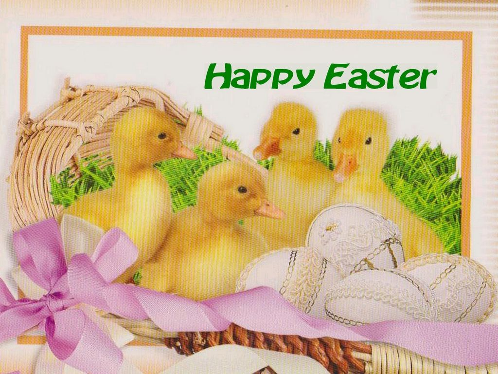 Easter Screensavers And Backgrounds | download instructions for windows users once the image has fully