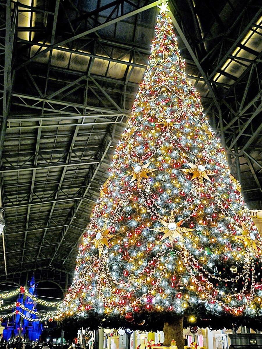 ディズニーランド クリスマス 2019