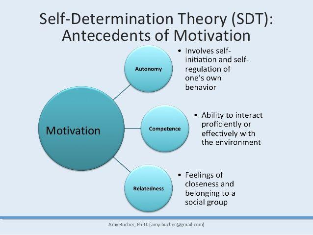 SelfDetermination Theory SDT Antecedents precursors
