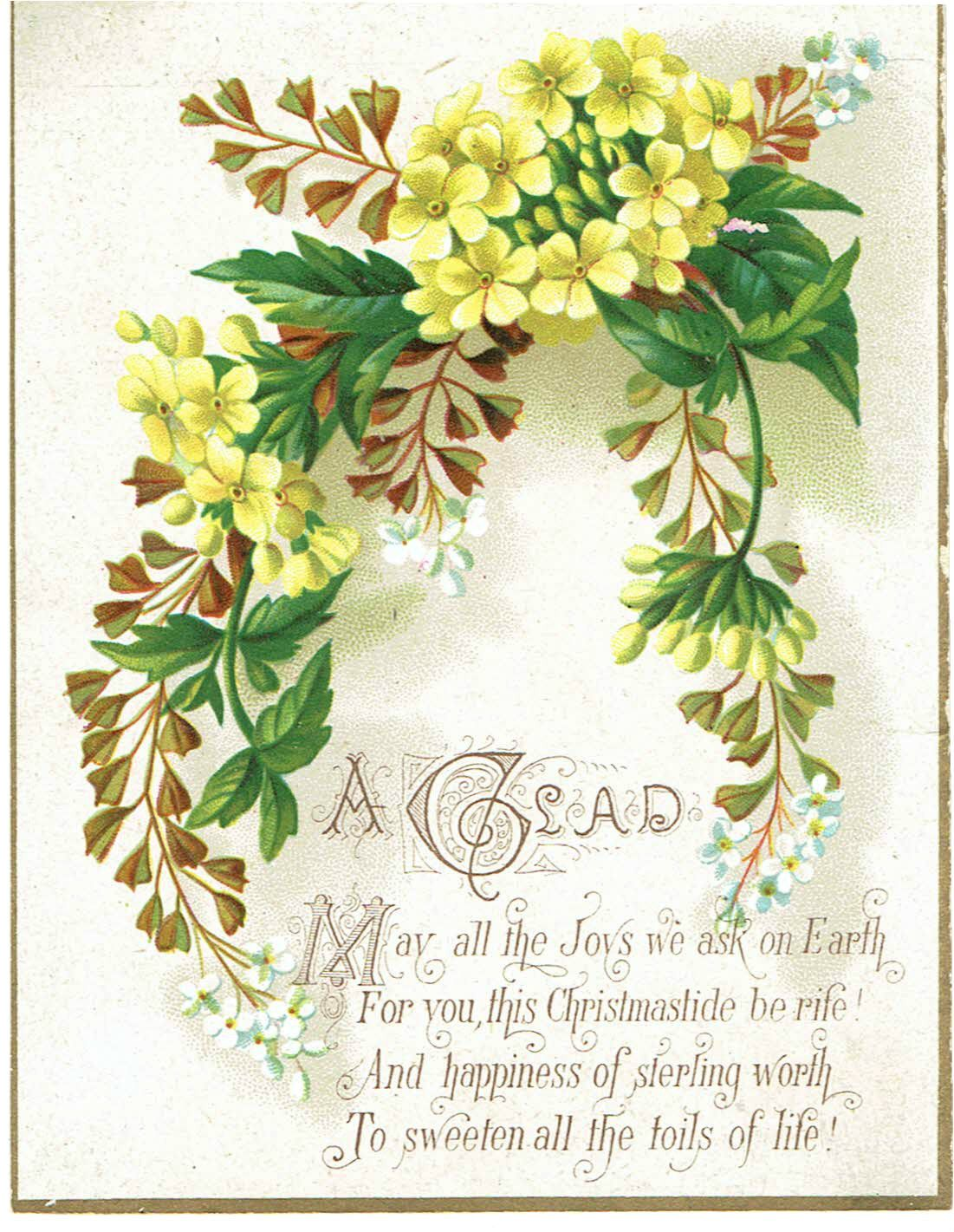 3 X Victorian Christmas Greetings Cards Ferns Leaves Flowers
