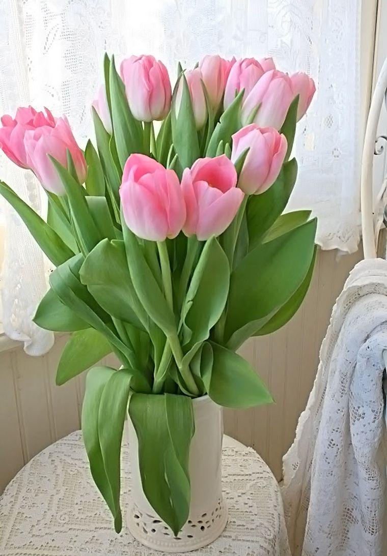 Beautiful Vase Of Cut Tulips We Try To Keep Fresh Cut Flowers In