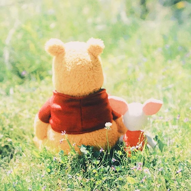 """""""Pooh, for a bear of very little brain, you sure are a smart one."""""""
