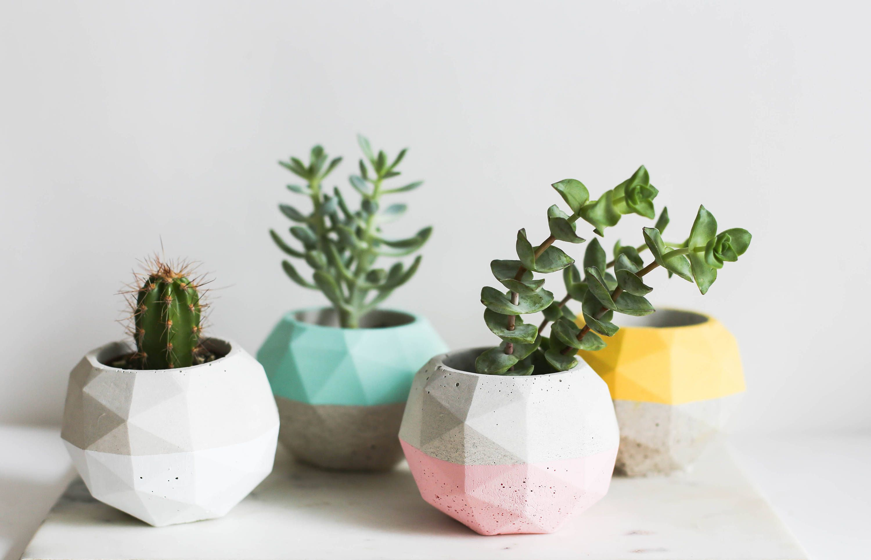 Planter Gift Geo Planter Large Succulent Planter Desk Plant Holder Desk Decor Geometric Planter Colorful Planter Succulent Garden Colorful Planters Planter Gift Desk Plants