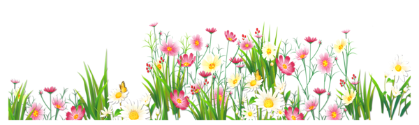 Flowers and Grass PNG Picture Clipart | Bordas | Pinterest ...
