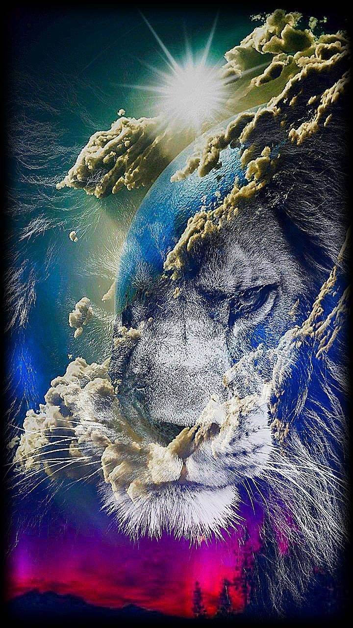 lion in the sky wallpaper by editor__21022 - f5 - Free on ZEDGE™