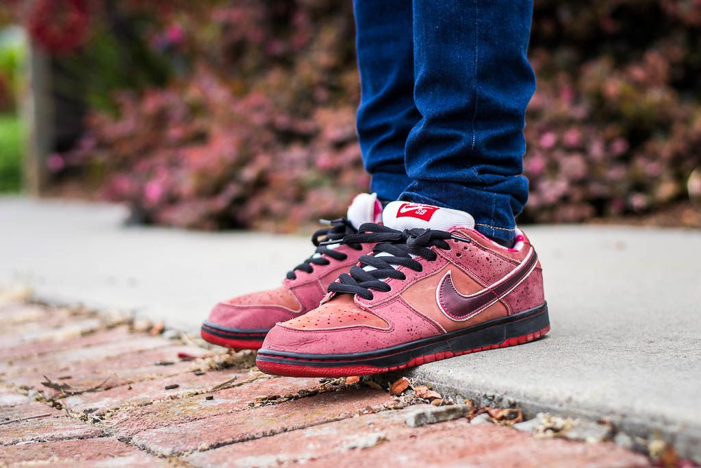 detailed look 71504 0f11f See my on foot video review of these Nike SB Dunk Low Lobster + where to  find em