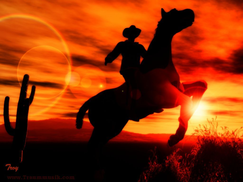 cowgirl silhouett wallpaper - photo #31