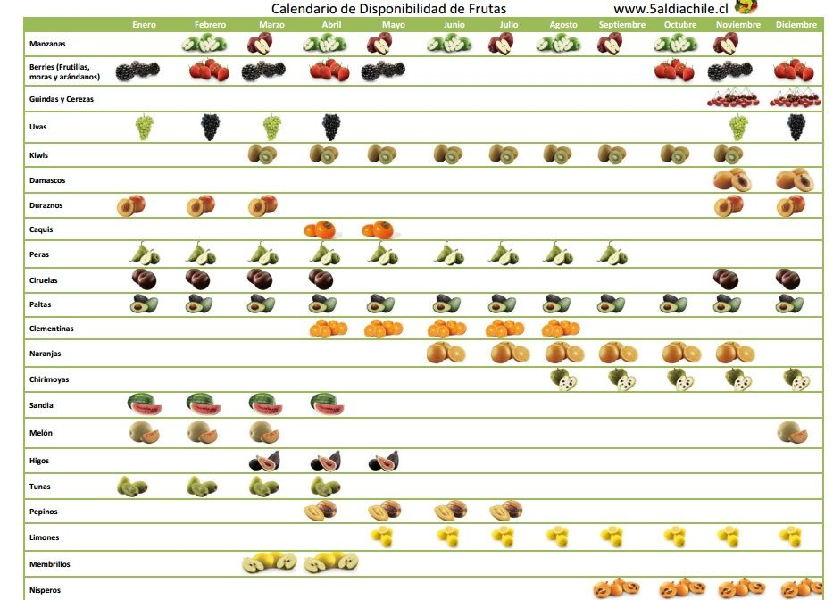frutas tiempo otoño chile