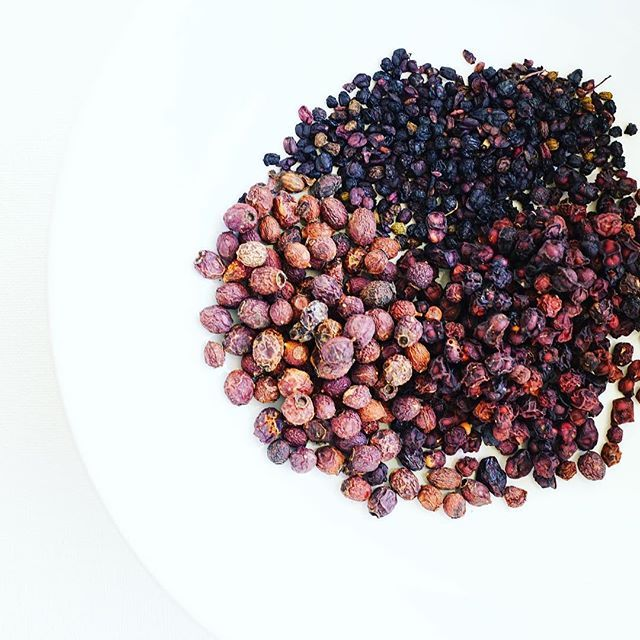 Botanical Medicine Medicinal Berries Hawthorne