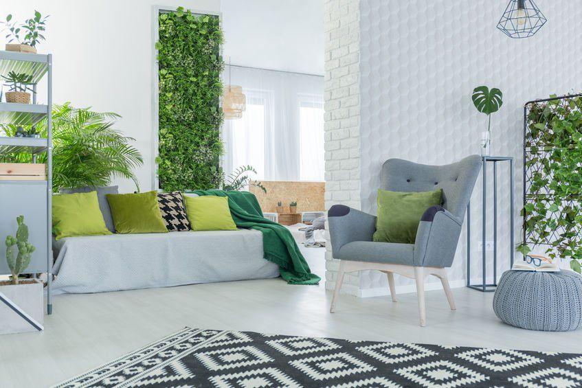Rosliny Pnace W Salonie Design Urzadzanie Urzarzaniewnetrz Urzadzaniewnetrza Bright Living Room Living Room Partition Design 2018 Interior Design Trends