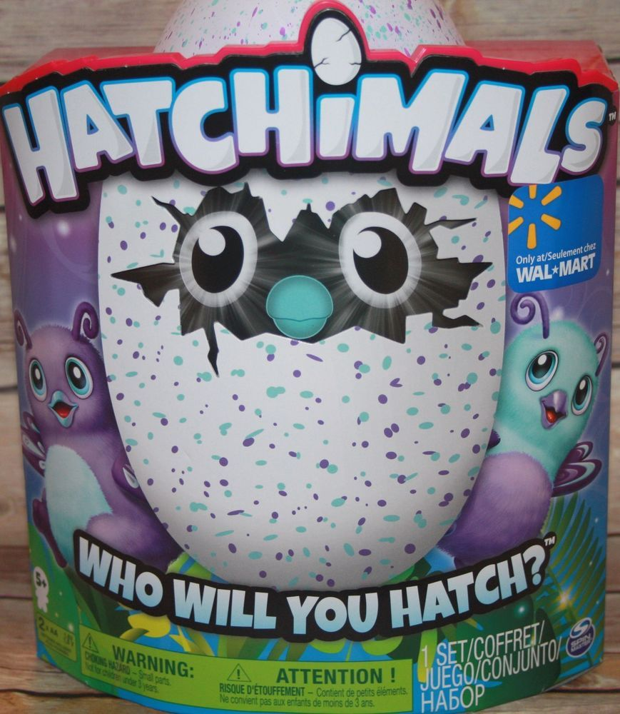 Hatchimal Burtle Walmart Exclusive Teal/Purple Interactive Egg ...