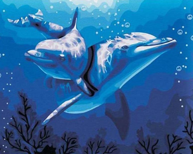 Photo of Dolphins – Paint by Numbers Classic – 16 x 20 (40 x 50cm) / No Frame