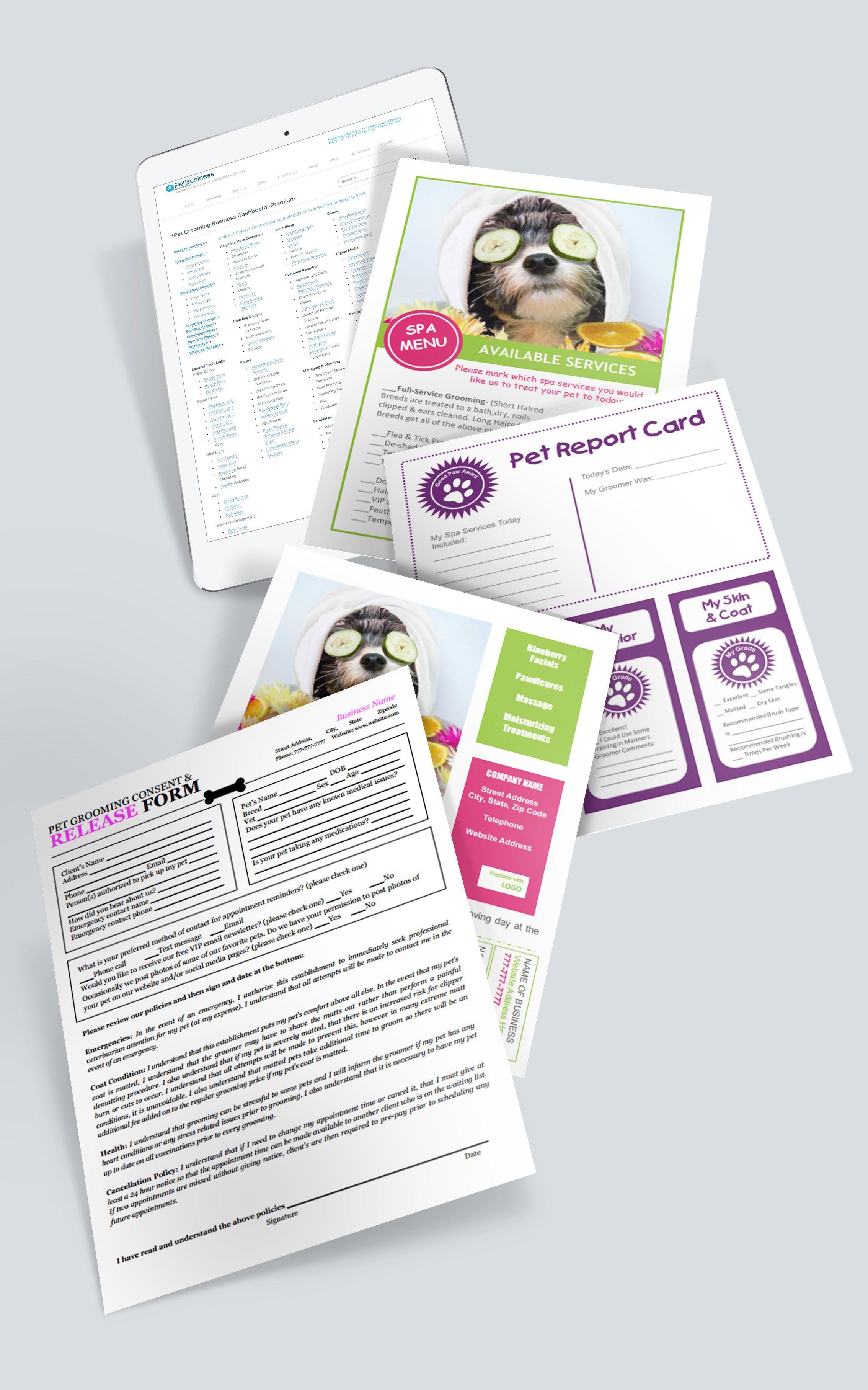 Pet Business Dashboard Marketing Ideas, Templates, Plans
