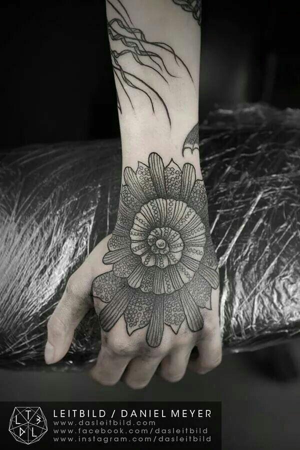 Ammonite Tattoo : ammonite, tattoo, Ammonite, Tattoo, Tattoos, Girls,, Tattoos,