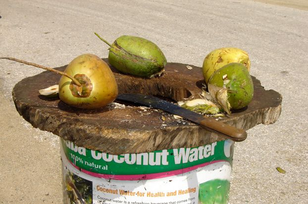 Another natural hangover remedy  coconut water. #aioutlet Its common to see fresh coconut sold at attractions in Aruba