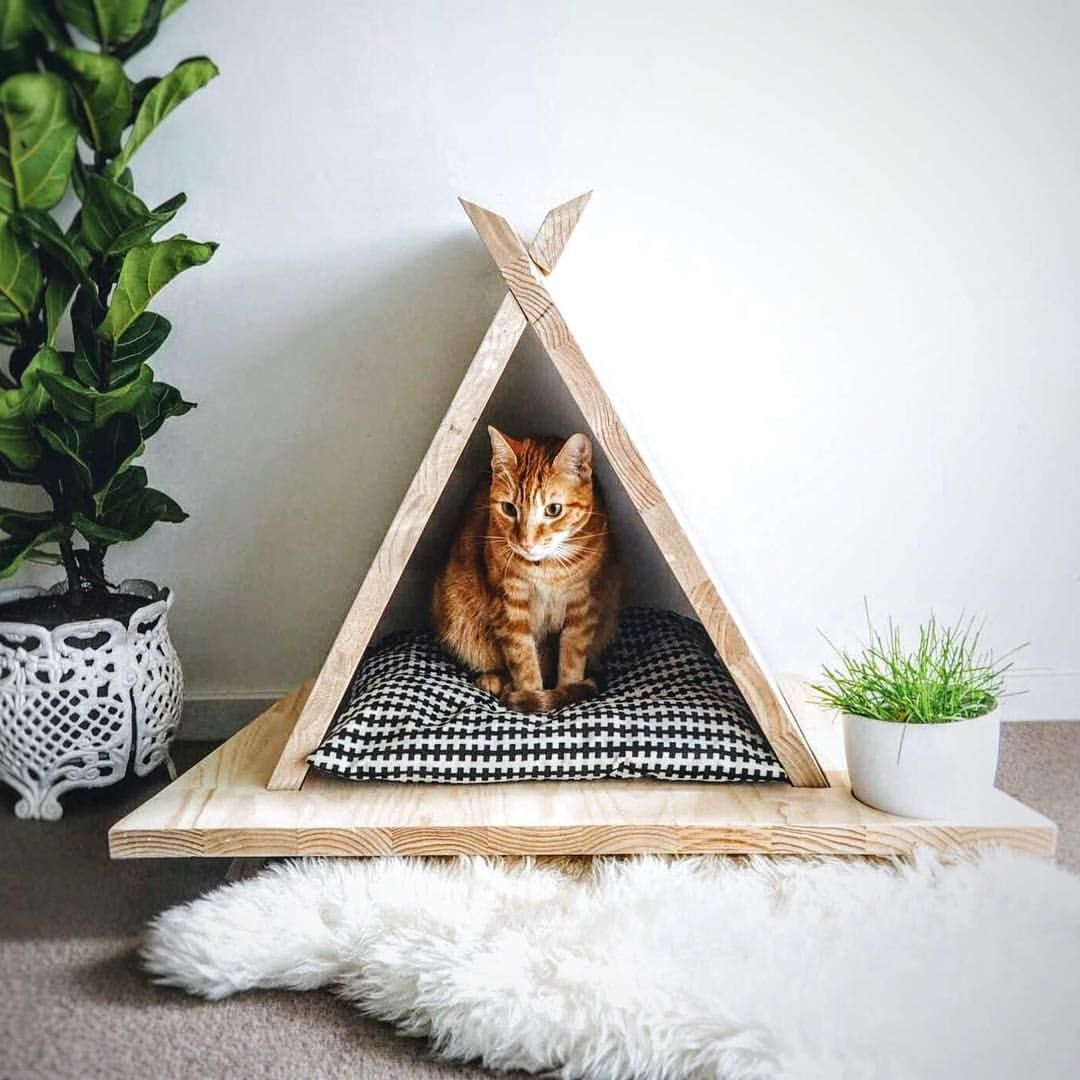Dreamy Teepee For A Cat With Style Cats Kitten Gingercats Catsofmelbourne Catsofstkilda Cat Diy Diy Cat Tree Cats Diy Projects