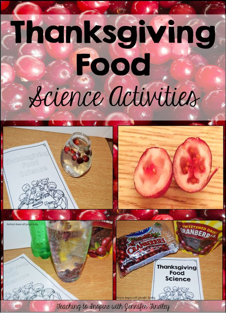Thanksgiving Science Activities {With Cranberries} - Teaching to Inspire with Jennifer Findley