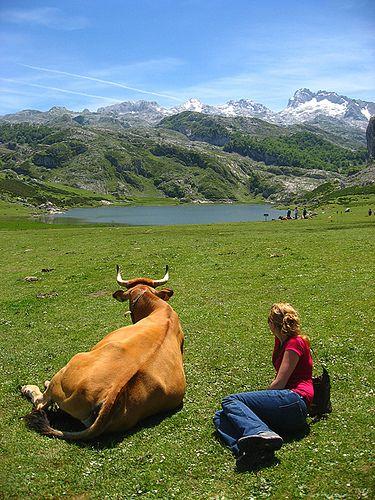 Lago Ercina | Spain, beautiful countryside