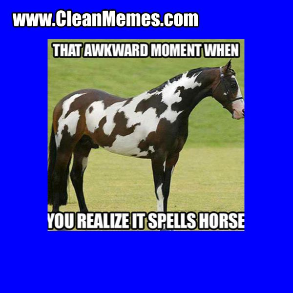 Cleanmemes Cleanjokes Cleanimages Www Cleanmemes Com Funny Animals Funny Horses Cute Funny Animals