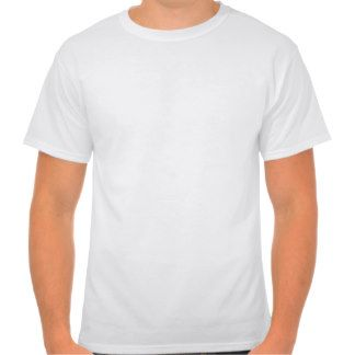 Women's Hanes Nano V-Neck T-Shirt Template DIY FUN | 137 all WHITE ...